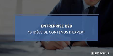 Entreprise B2B:10 idées de contenus d'expert > Blog redacteur.com | SEO SEA SEM - Référencement Naturel & Payant | Scoop.it
