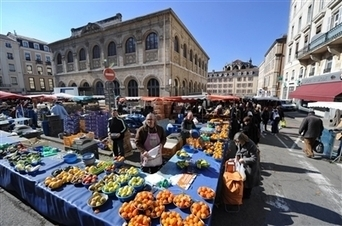 """marché La mention """"Terres viennoises"""" identifiera les agriculteurs ... - Le Progrès   oenologie en pays viennois   Scoop.it"""