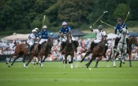 Polo streaming transforming sport of kings into interactive digital 'grandfather of extreme sports' | SportonRadio | Scoop.it