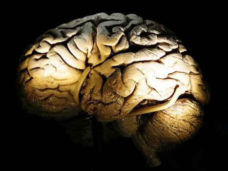 Breakthrough in Parkinson's research | #ALS AWARENESS #LouGehrigsDisease #PARKINSONS | Scoop.it