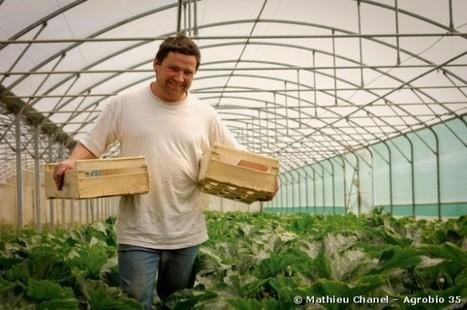 L'agriculture biologique devient le modèle à suivre | Le monde bio | Scoop.it