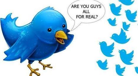 Qui sont et d'où viennent les faux followers sur Twitter ? | La révolution numérique - Digital Revolution | Scoop.it