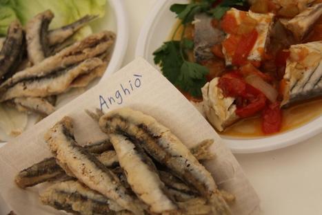 Anghiò 2014, San Benedetto del Tronto: Festival del Pesce Azzurro | Le Marche un'altra Italia | Scoop.it