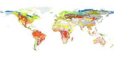 Diversity of soil types can be an indicator of aboveground biodiversity | Soil Science Society of America | spatial analysis for biodiversity conservation | Scoop.it