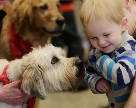 Pooches help kids have a doggone good time at the library | Reading discovery | Scoop.it
