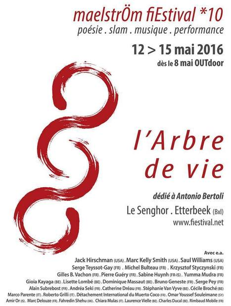 12-15 mai 2016 ::  maelstrÖm fiEstival *10 | TdF  |   Poésie contemporaine | Scoop.it