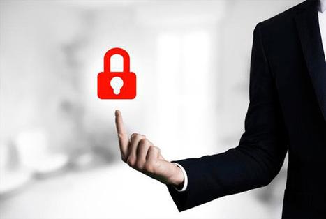 Vie privée et sécurité : un débat technologique nécessaire | Risk Management & Intelligence Economique | Scoop.it