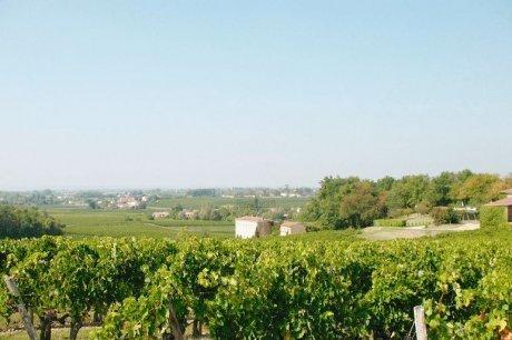 Le tourisme par le vin - Sud Ouest | Centre culturel et touristique du vin - Bordeaux | Scoop.it