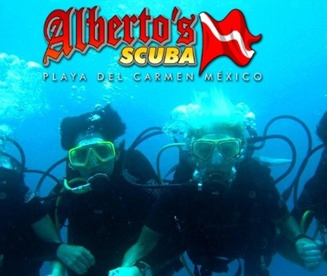 Scuba Diving in Mexico with ALBERTOS SCUBA - Divers' Reviews   Dive Operators around the World   Scoop.it