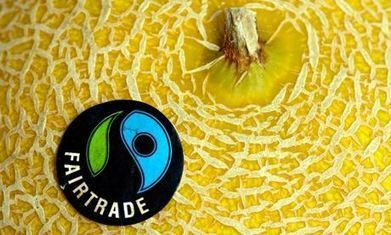 Global Fairtrade sales reach £4.4bn following 15% growth during 2013 | Fair trade | Scoop.it