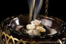 Herbal Oil: Frankincense Oil Benefits and Uses | Raw Edible Organic Skin Care | Scoop.it