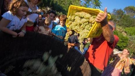 Italie. Quand le volcan s'éteint, le vin s'éveille... - Ouest-France | Hotel Collection | Scoop.it