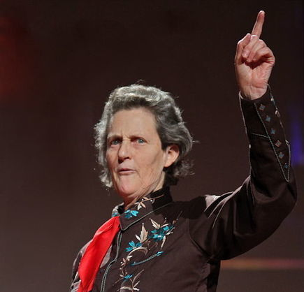 Dr. Temple Grandin: Sensory Issues and Sensitivity | Autism Spectrum Disorder | Scoop.it