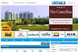 First Page Promotion | Portfolio | webdesigning | Scoop.it