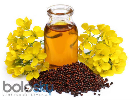 Guys, It's Time To Cook With Mustard Oil | HealthNFitness | Scoop.it