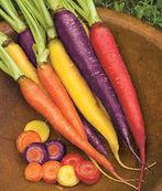 Système immunitaire: avantage au bio? - Journal de l'environnement | Sécurité sanitaire des aliments | Scoop.it