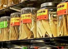 Singapore's Largest Supermarket Chain Says No To Shark Fin Products #scuba #ocean | Scuba Diving | Scoop.it