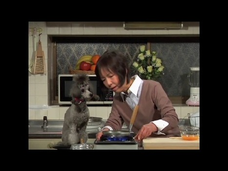 """Japanese """"Cooking with Dog"""" - Accidental Epicurean 