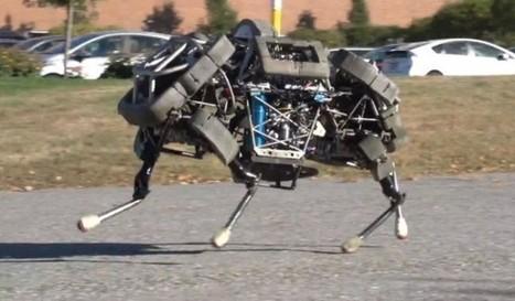 Google buys human, animal-replica robot builder | Business Video Directory | Scoop.it