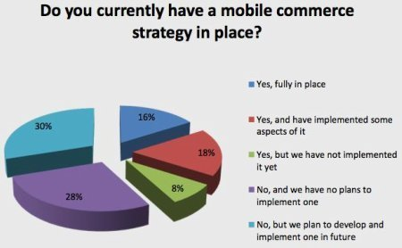 UK retailers aren't ready for mobile commerce: survey | Go Mobile | Scoop.it