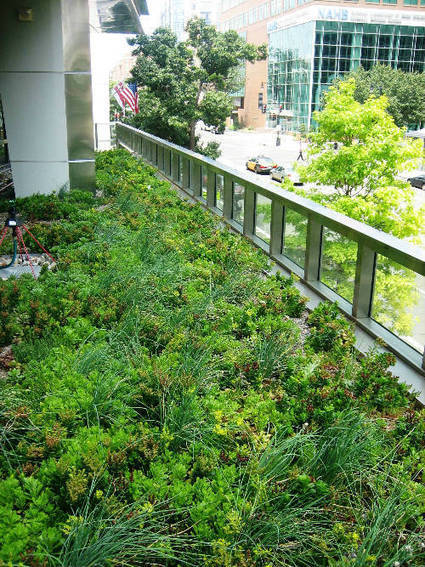 So, what's a green roof got to do with it? - Natural Resources Defense Council (blog) | Vertical Farm - Food Factory | Scoop.it