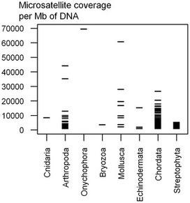 PLOS ONE: Breakdown of Phylogenetic Signal: A Survey of Microsatellite Densities in 454 Shotgun Sequences from 154 Non Model Eukaryote Species   Phylogenetics   Scoop.it