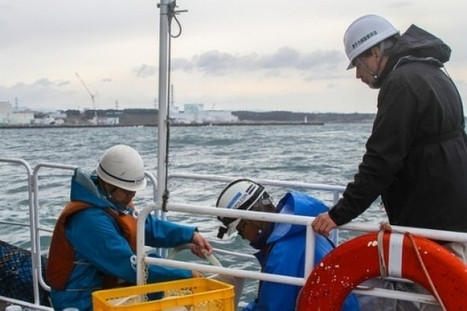 #Fukushima's #radioactive water to be dumped into #PacificOcean ~ Speaking In #anonymity ! | Rescue our Ocean's & it's species from Man's Pollution! | Scoop.it
