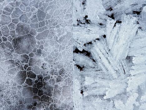 Ten Top Winter Photography Tutorials | Futurue | Scoop.it