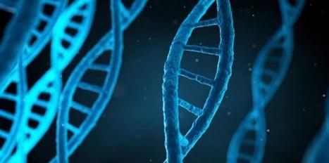 DECOUVERTE. Le code secret des virus | myScience | Scoop.it