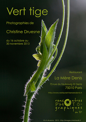 "Exposition: ""Vert tige"" - 
