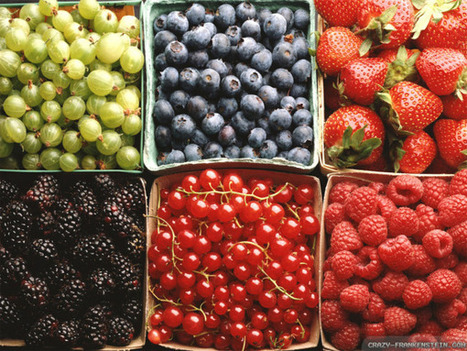Why You Should Eat Fruit Every Day No Matter What! #Vegan | Swtich To Veganism | Scoop.it