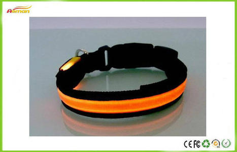 LED reflective dog safety collars_aboutpets的空间_百度空间 | cute pet supplies | Scoop.it