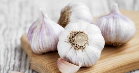 The Many Incredible Health Benefits of Eating Garlic: Boosting Your Immune System | zestful living | Scoop.it