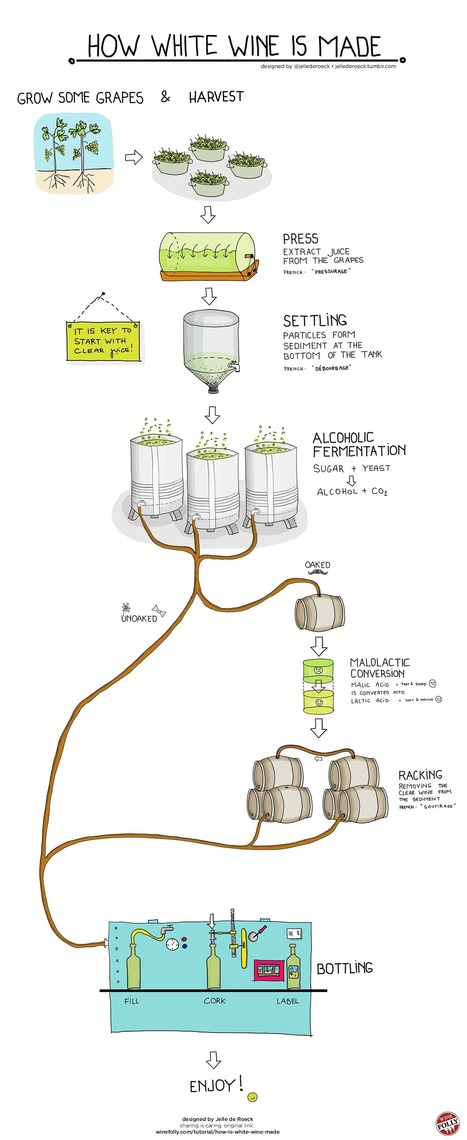 How is White Wine Made | Veille Oenologie Institut Jules Guyot Raphëlle Tourdot | Scoop.it