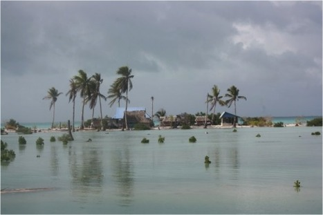My Kiribati Experience | CAN International | adapting to climate change | Scoop.it
