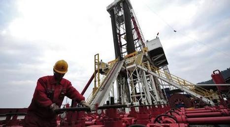 Pas seulement des ressources énergétiques : tout ce que l'industrie française perd à l'interdiction de la recherche sur les gaz de schiste | LaLIST Veille Inist-CNRS | Scoop.it
