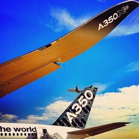 Biomimetics: the Nature as a Source of Inspiration for A350 XWB Design. | Biomimicry | Scoop.it