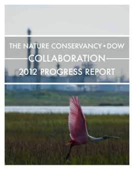 What's the Added Value of an Ecosystem Services Approach for Business? | Nature + Economics | Scoop.it