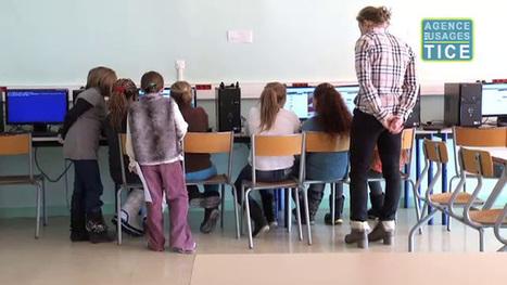 L'Agence nationale des Usages des TICE - Twitter en classe de CM | semestre 2 : TICE | Scoop.it