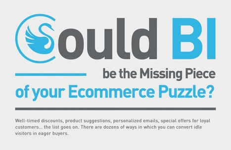 Could BI be the missing piece of your eCommerce puzzle | Technology Enthusiasts | Scoop.it