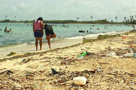 Ecosistemas de tres parques venezolanos en deterioro progresivo | El Venezolano | Bioderecho y Ciencias Jurídicas | Scoop.it