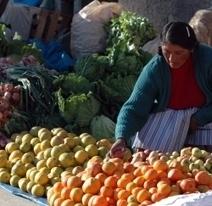 Agriculture familiale pour nourrir la planète : quels outils pour permettre à la production alimentaire ? | Questions de développement ... | Scoop.it