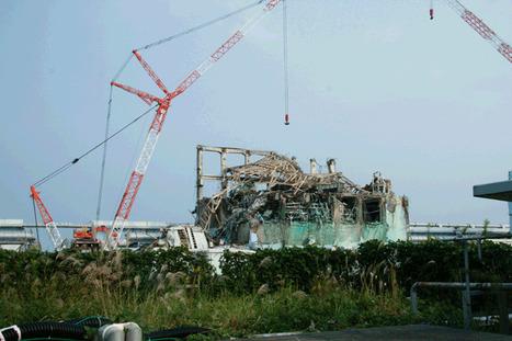 Environ 23 centrales nucléaires sont sous la menace d'un tsunami | Toxique, soyons vigilant ! | Scoop.it