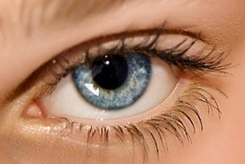 Eye cells 3D-printed for first time   3D Printing tools for science   Scoop.it