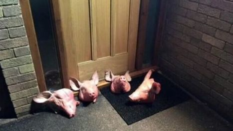 Pig heads dumped outside Solihull 'mosque' | UNITED CRUSADERS AGAINST ISLAMIFICATION OF THE WEST | Scoop.it