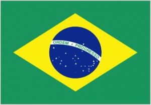 Brazilian Martial Arts and Dance Festival: June 17-18 : New ... | brazilianspirit | Scoop.it