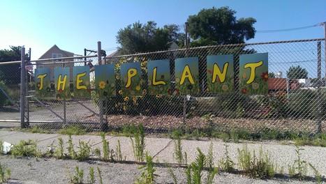 Urban Agriculture Forces Creativity - Muffadal ...   Urban Aquaponics Farm   Scoop.it