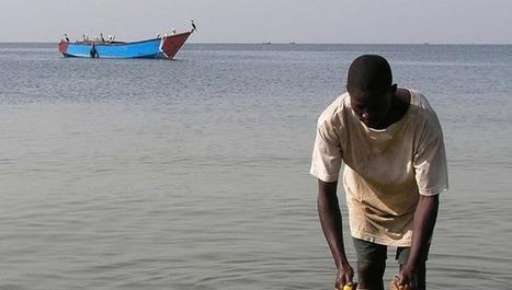 Modern strains put Lake Victoria in critical condition - SciDev.Net | WASH Uganda | Scoop.it