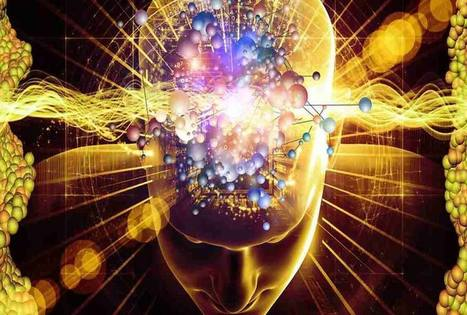 Promesses et controverses en neurosciences | Fonctionnement du cerveau & états de conscience avancés | Scoop.it