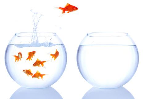 Comprendre l'identité d'une marque | Actualités des entreprises | Scoop.it